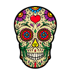 Mexican sugar skull isolated on white background vector
