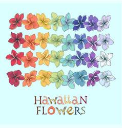 Rainbow hawaiian flower lei set vector