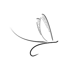 Fly fishing icon vector image