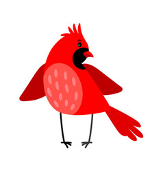 cardinal bird icon isolated on white vector image