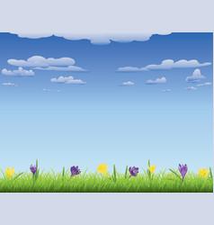 Crocus in the grass vector