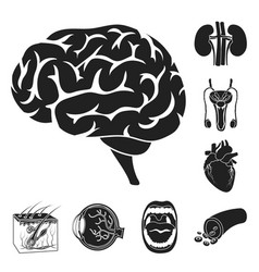 Internal organs of a human black icons in set vector