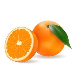 juicy orange with a slice vector image