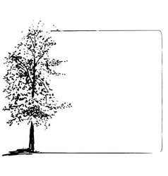 trees collection ink trees grunge frame vector image