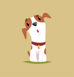 funny jack russell puppy character cute terrier vector image