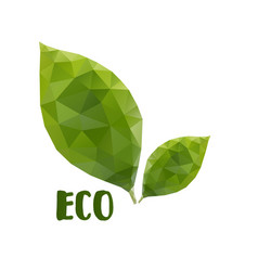 low poly leafs eco concept vector image