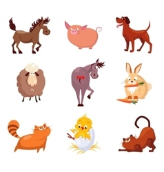 Domestic Animals and Birds vector image vector image