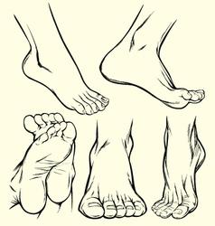 feet drawings vector image