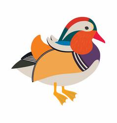asian mandarin duck isolated on white vector image
