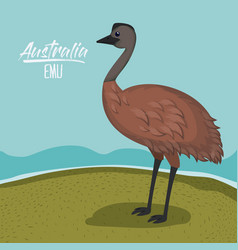 australia emu poster with outdoor scene in vector image
