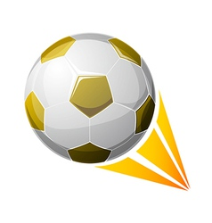 icon soccer ball vector image
