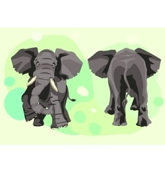 large grey Indian elephant goes forward vector image