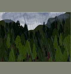 rain and forest vector image