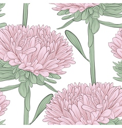 seamless background with pink flowers aster vector image