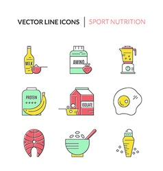 Sport Nutrition vector
