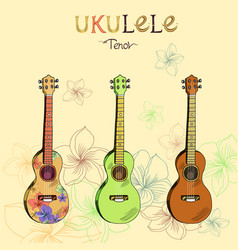 ukulele tenor set vector image