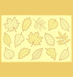 Vintage set of autumn leaves vector