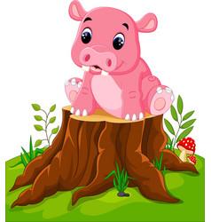 cartoon cute baby hippo on tree stump vector image vector image
