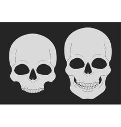 Skull chalk clip art vector image vector image