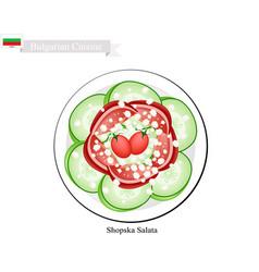 shopska salata a popular dish of bulgaria vector image vector image