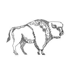 American buffalo doodle art vector