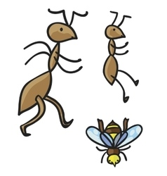 Ants and bee vector image