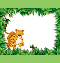 cheetah in nature scene vector image