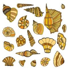 Seashell set collection vector image