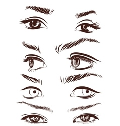 Set of woman eyes lips eyebrows and noses as vector image