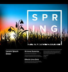 spring grass dawn modern flyer template vector image