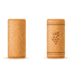 Corkwood cork for wine bottle vector