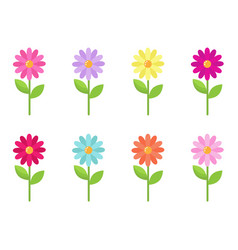 Daisy collection vector