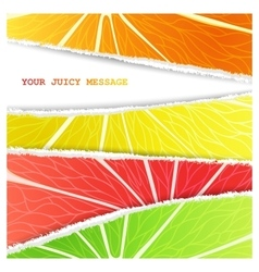 Four citrus background vector image