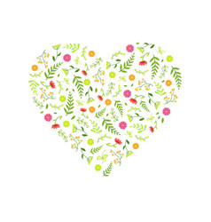 heart made beautiful wild flowers decorative vector image