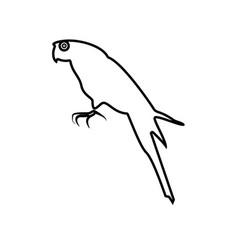 parrot black color icon vector image