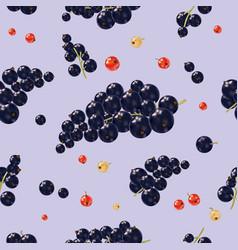 seamless pattern black currant berries vector image