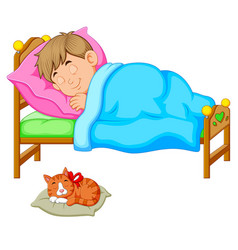 sleeping boy in bed with a kitten vector image