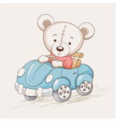 cute funny bear drive a car vector image