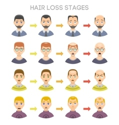 Baldness stages set vector image