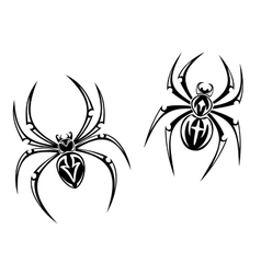 Danger spiders vector