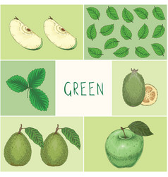 education game green color fruits and leaves vector image