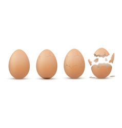 eggshell cracking stages egg breaking sequence vector image