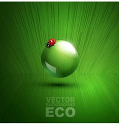 Element for ecological design with ladybug vector