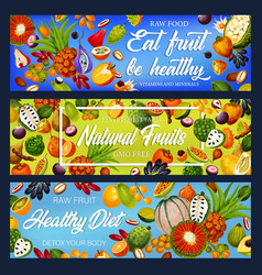 Fruits and berries detox nutrition gmo free vector