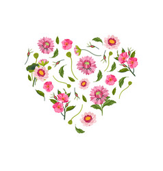 heart made beautiful pink flowers decorative vector image