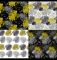 set modern seamless patterns with monstera vector image