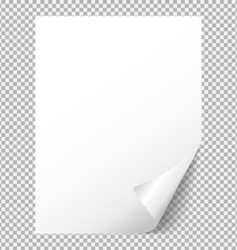 Sheet of white paper with a bent corner vector