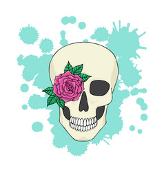skull with flower on background colorful vector image