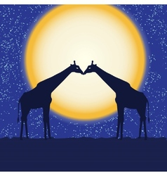 Card with giraffe pair at night vector image vector image