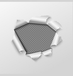 paper hole with torn edges isolated on transparent vector image vector image